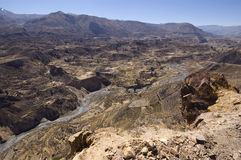 Canyon Perù di Colca Fotografia Stock Libera da Diritti
