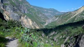Canyon Peru Near Arequipa de Colca clips vidéos