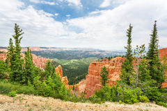 Canyon with pine trees. At Bryce Canyon National Park, Utah, USA stock photography