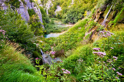 Canyon in Plitvice national park, Croatia Royalty Free Stock Photography