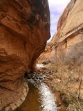canyon rachunku, czarny Obraz Royalty Free