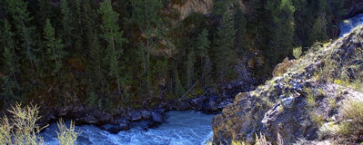 Canyon. Of the rapid and rapid river Oroy, Gorny Altai, Siberia, Russia Stock Images