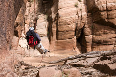 Canyon Rappeller 6 di Zion Immagine Stock