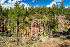 Canyon Rim Trail del sicomoro in Arizona Fotografie Stock Libere da Diritti