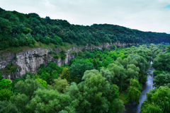 Canyon, river and forest Stock Image