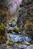 Canyon and river Stock Photography