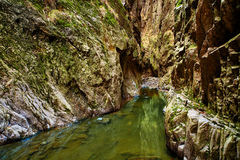 Canyon and river Royalty Free Stock Photos