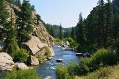 Rock Canyon River Rapids. A river flows through a canyon in the mountains on a sunny day Royalty Free Stock Image