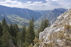 Canyon of river Tara, Montenegro Stock Photo