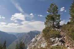 Canyon of river Tara, Montenegro Stock Photography