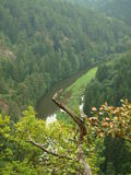 Canyon River Thaya. Lower Austria royalty free stock images