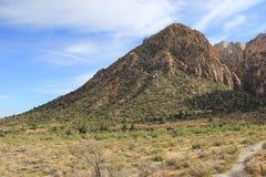 Canyon rossi della roccia immagine stock libera da diritti