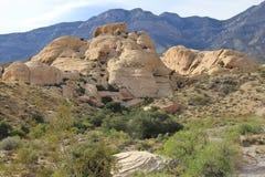 Canyon rossi della roccia Immagine Stock