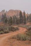 Canyon rosso Fotografie Stock Libere da Diritti