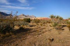 Canyon rosso della roccia Fotografia Stock Libera da Diritti