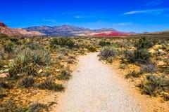 Canyon rosso della roccia Fotografie Stock