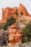 Canyon rosso nella foresta nazionale di Dixie Fotografia Stock Libera da Diritti
