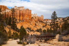 Canyon rosso Utah Immagini Stock
