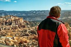 Canyon rosso Utah Fotografia Stock