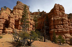 Canyon rouge, Utah, Etats-Unis Images libres de droits