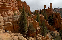 Canyon rouge, Utah, Etats-Unis Photographie stock libre de droits