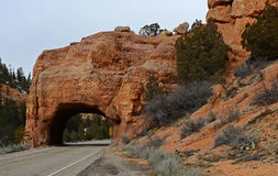 Canyon rouge, Utah, Etats-Unis Images stock