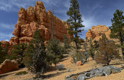 Canyon rouge, Utah, Etats-Unis Photographie stock