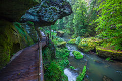 Canyon scenery and trails Kamnitz Gorge in the Czech Switzerland Stock Photos
