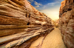 Canyon in Sinai Royalty Free Stock Images