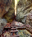 Canyon in Slovensky Raj, Slovakia Stock Photos