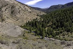 Canyon Stream. Stream running through a canyon in Wyoming with mountains in the background stock photography