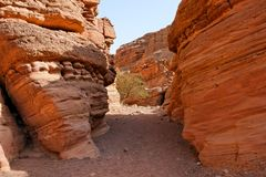 Canyon between striped orange rocks Royalty Free Stock Photos