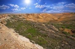 Canyon sul di Ustyurt Fotografie Stock Libere da Diritti