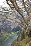 Canyon Sumidero, il Chiapas, Messico Fotografia Stock