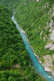 Canyon of Tara river Stock Photo