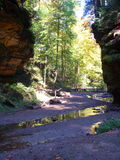 Canyon Trickle. Canyon river Stock Photography