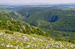 Canyon of Uvac river, Serbia Royalty Free Stock Photos