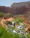 Canyon view of Havasu Royalty Free Stock Photo