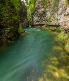 Canyon Vintgar Royalty Free Stock Image
