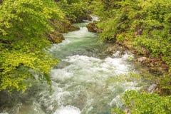 Canyon Vintgar Royalty Free Stock Photos