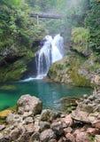 Canyon of Vintgar, Slovenia. Canyon of Vintgar, National Park in Slovenia Royalty Free Stock Images