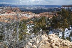 Canyon Vista di Bryce Fotografia Stock
