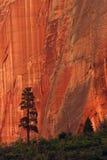 Canyon wall Stock Photos