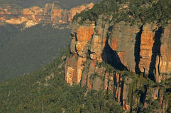 Canyon wall. Canyon in blue mountains, sydney, australia Royalty Free Stock Photos