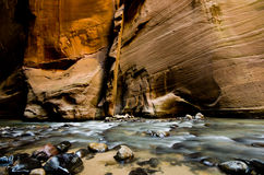 The canyon wall in The Narrows, a hike at Zion National Park. Stock Photo