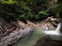 Canyon with waterfall and driftwood Royalty Free Stock Photography