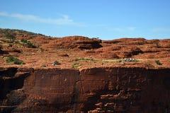 Canyon Wattarka国王国家公园 免版税图库摄影