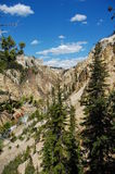 Canyon in Yellowstone. A canyon in Yellowstone National Park Stock Photo