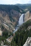 Yellowstone National Park, USA Stock Image