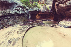 Canyon in Zion Royalty Free Stock Photography
